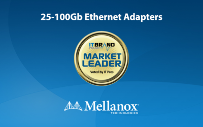2019 Networking Leaders: 25-100Gb Ethernet Adapters