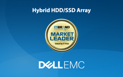 2019 Flash Leaders: Hybrid HDD/SSD Array