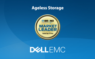 2020 Storage Leaders: Ageless Storage