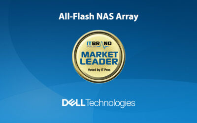 2020 Flash Leaders: All-Flash NAS Array