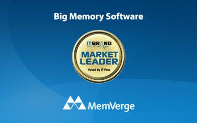 2020 Flash Leaders: Big Memory Software