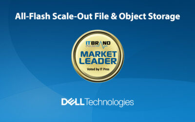 2020 Flash Leaders: All-Flash Scale-Out File & Object Storage Systems