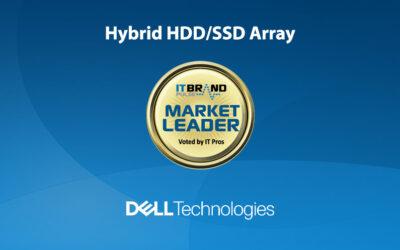 2020 Flash Leaders: Hybrid HDD/SSD Array