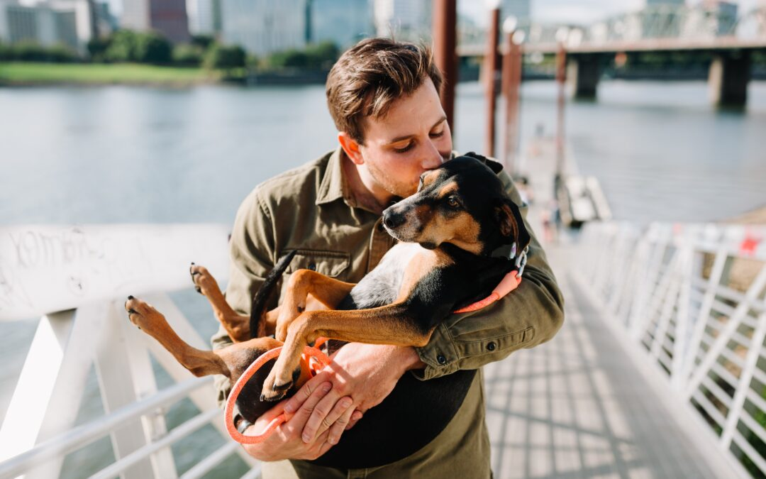 July Is Lost Pet Prevention Month