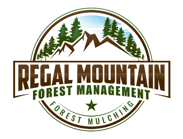 Experts in Forest Management, Clearing and Cleaning