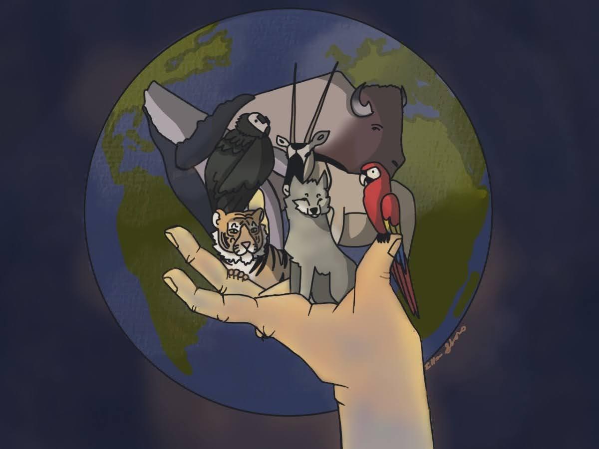 Metatron Animal Knowledge Level II In Person