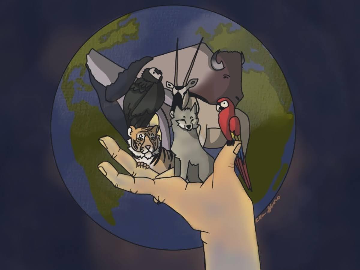 Metatron Animal Knowledge Level II