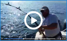 Aces Up Fishing
