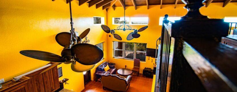 Martineau Living Overhead a
