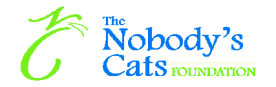 Nobody Cats Foundation Logo
