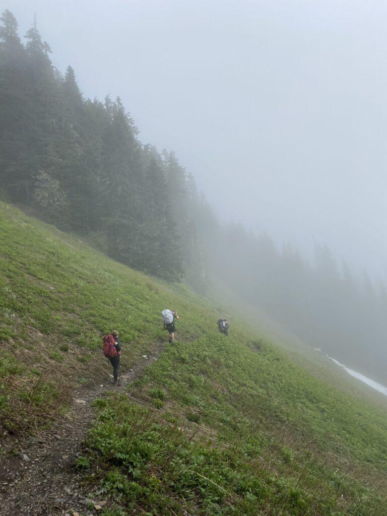 hiking through the fog on pierce lake trail