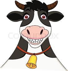 BSF wild cow chases crash Bangladesh beef economy