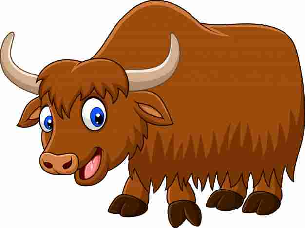 Insure Your Yak against Climate Change