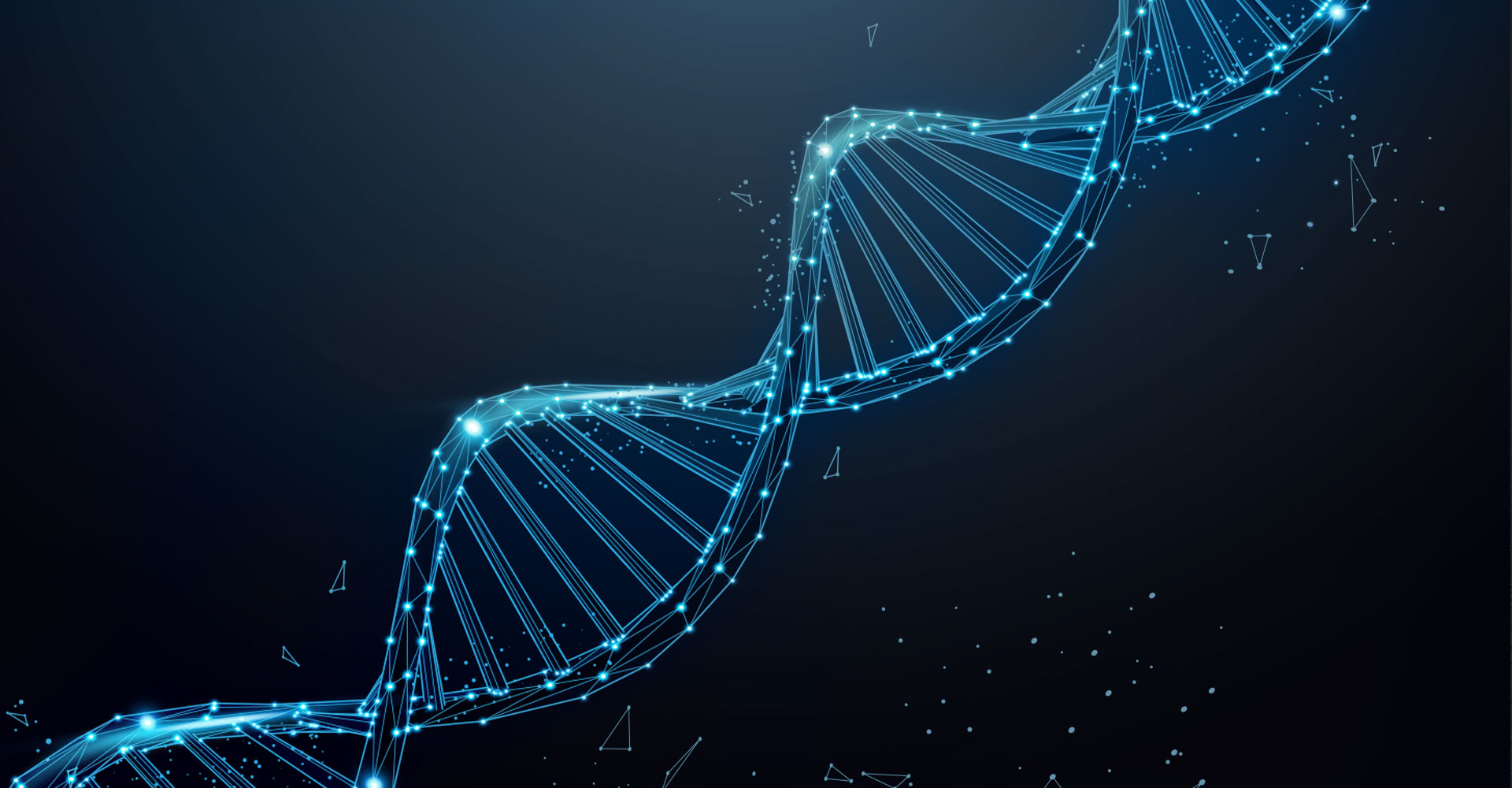 The 2 Intersecting Stands of Your Business DNA