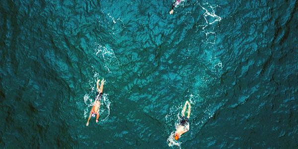 NSswim_blog_oceanswimtips