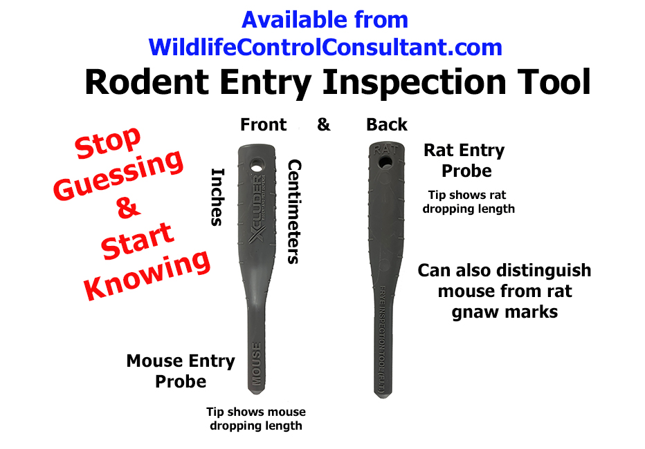 Rodent Inspection Tool Ad