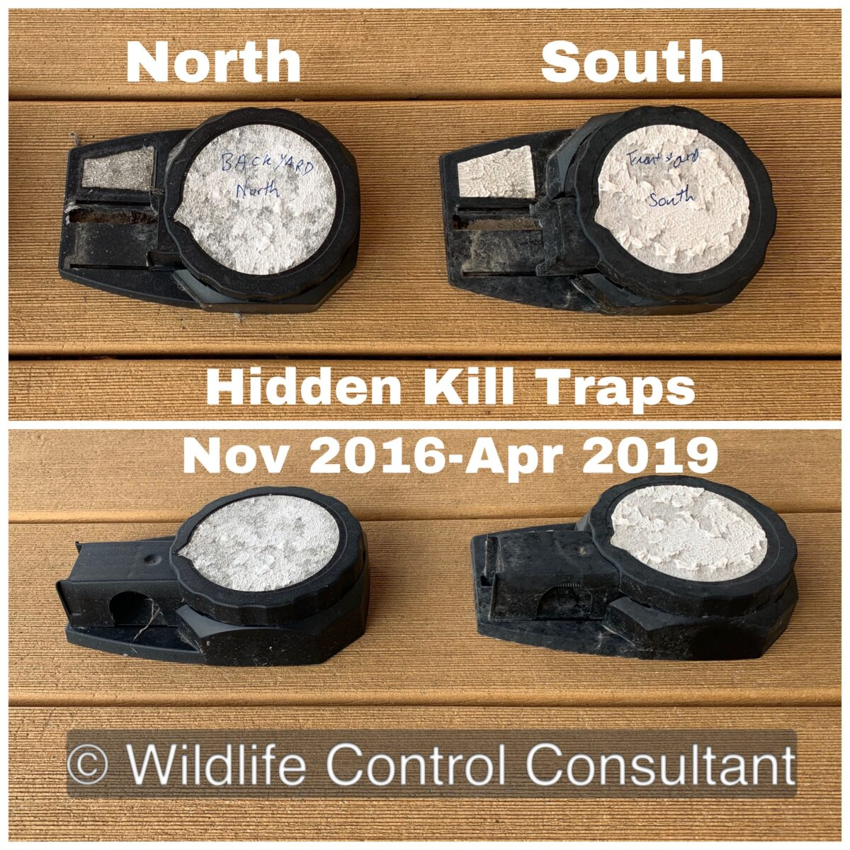 Hidden Kill traps after being outdoors about 30 months