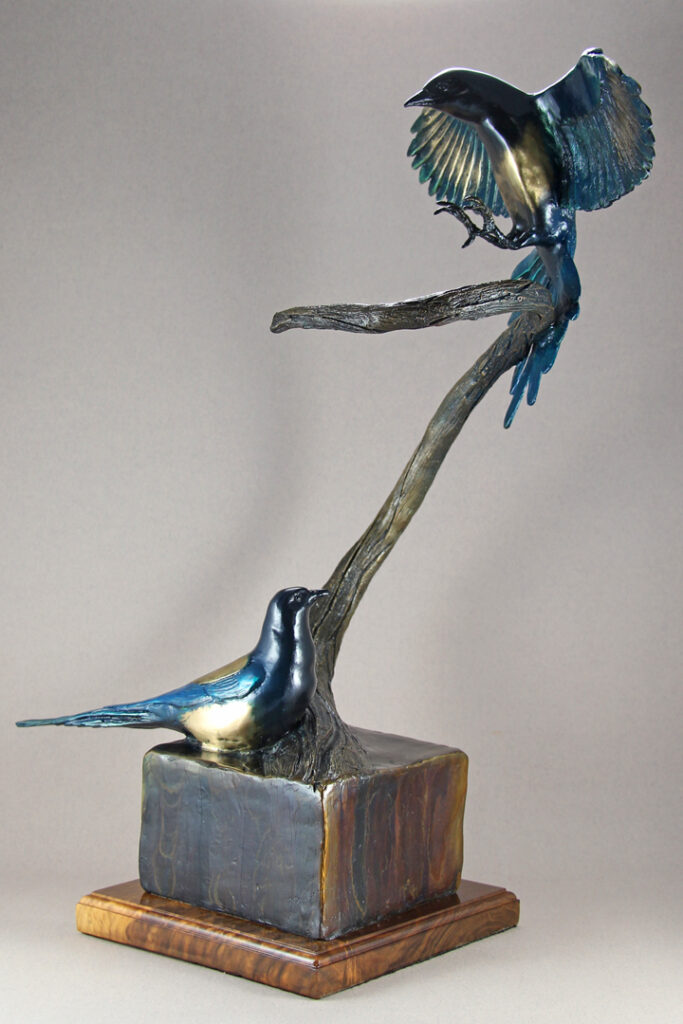 Bronze Magpie Pair, with one landing on a branch while the other is sitting below watching.