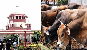 Committee of Animal Welfare Board constituted