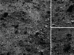 A Region of Bennu's Northern Hemisphere Close Up