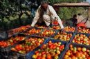 """Central Sector Scheme """"Formation and Promotion of 10,000 new Farmer Producer Organizations (FPOs)"""""""