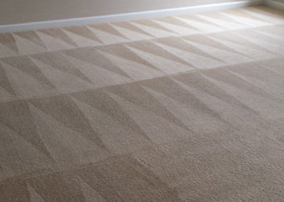 Raleigh Residential Carpet Cleaning 2