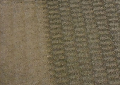 Raleigh Residential Carpet Cleaning 4