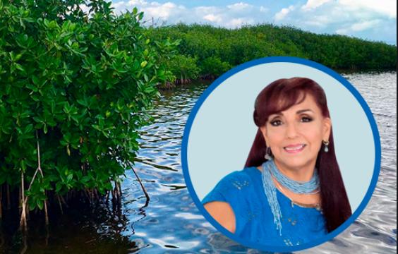 Imprescindibles los manglares para la vida humana: Paty Santos