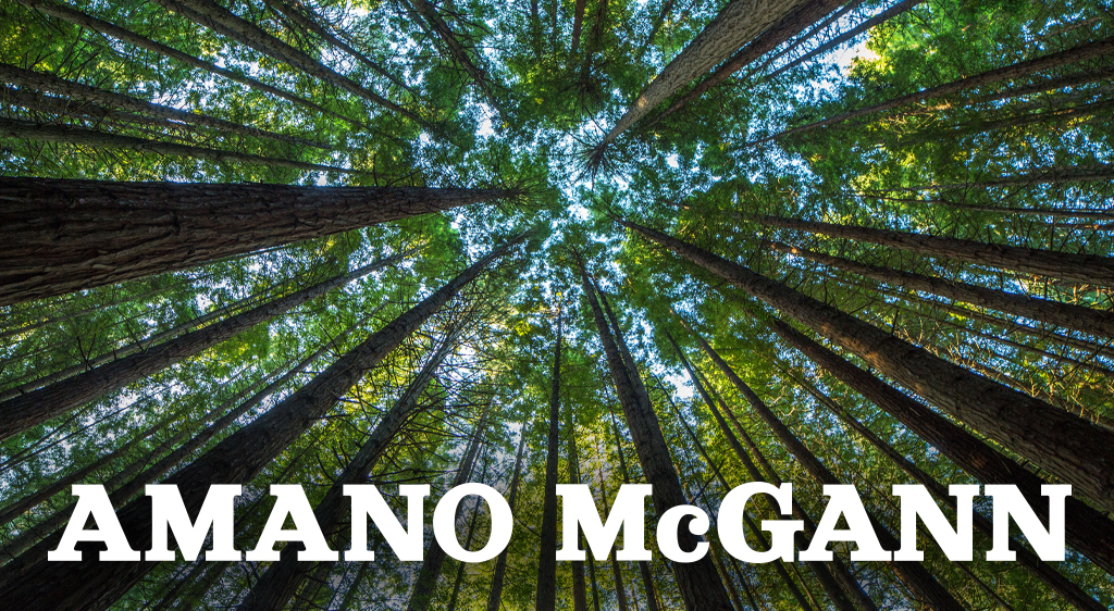 Amano McGann Reports Exceptional Dealer Sales Growth