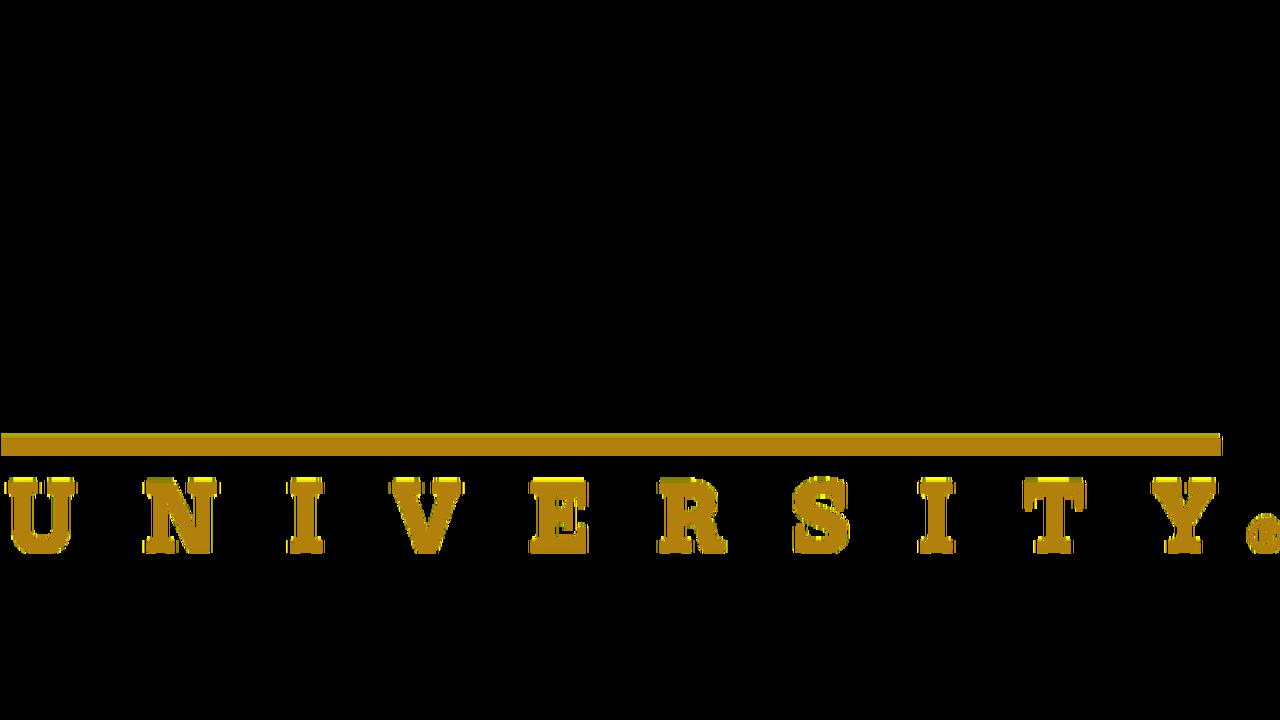6 - Purdue logo