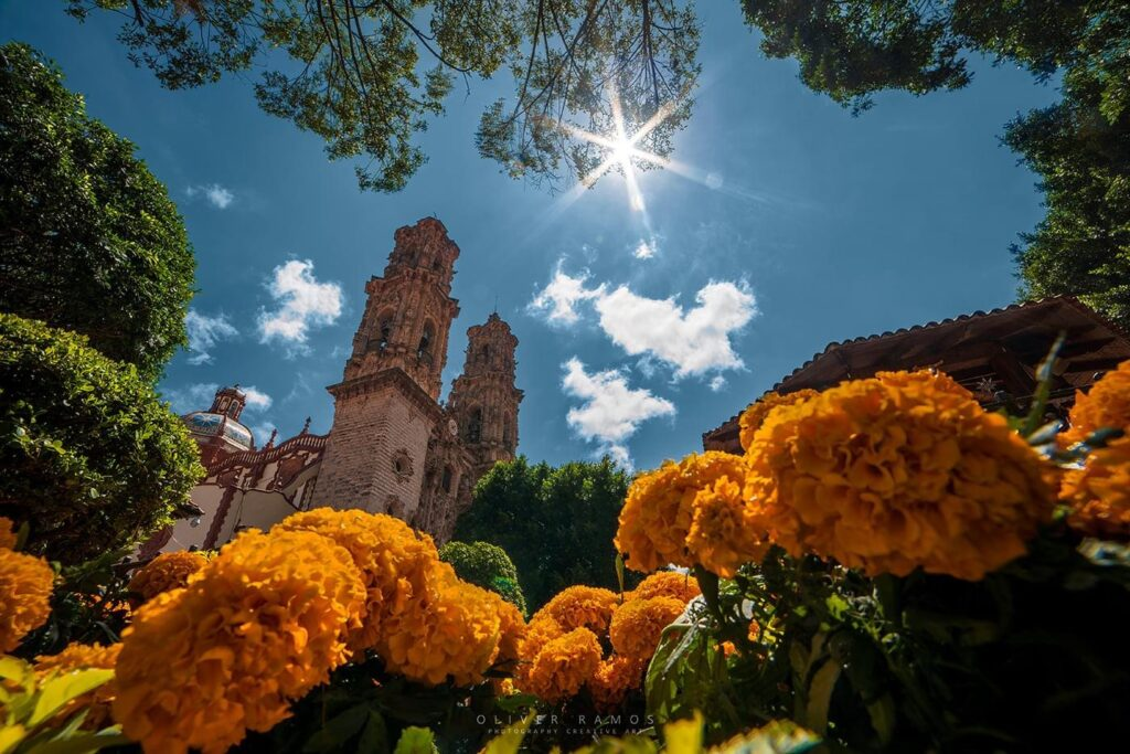 Taxco with Marigolds