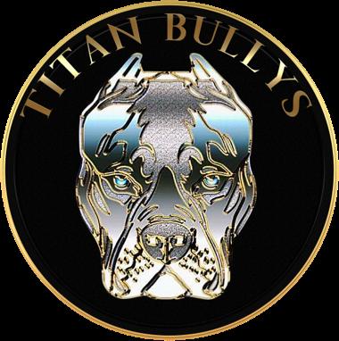 Titan Bullys