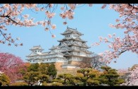 Newly renovated Himeji Castle … the White Crane Castle