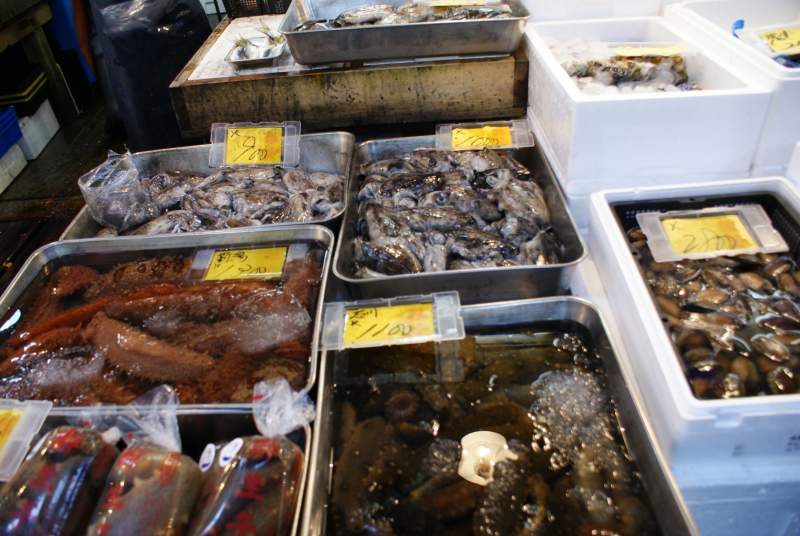 Tsukiji Market seafood