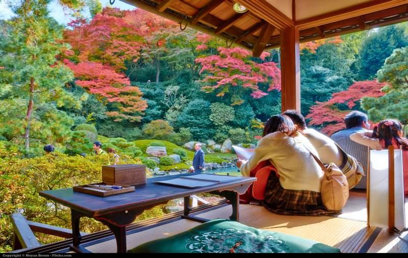 kyoto shorenin temple autumn