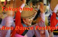 Tokushima Awa Dance Festival – Japan's largest dance festival