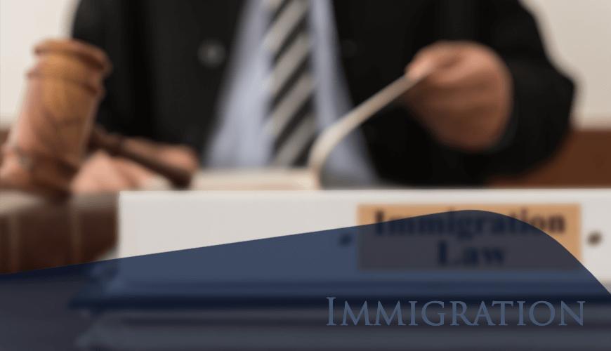 Immigration870x500