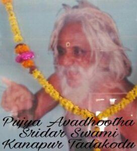 Siddha Mahayogi Pujya Sridharananada Swami Maharaj