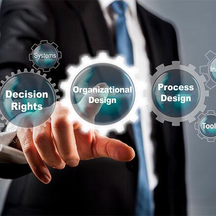 photo of organizational design