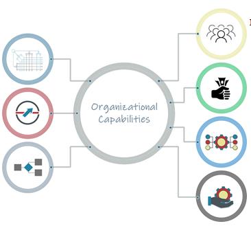 Illustration of the 7 performance disciplines