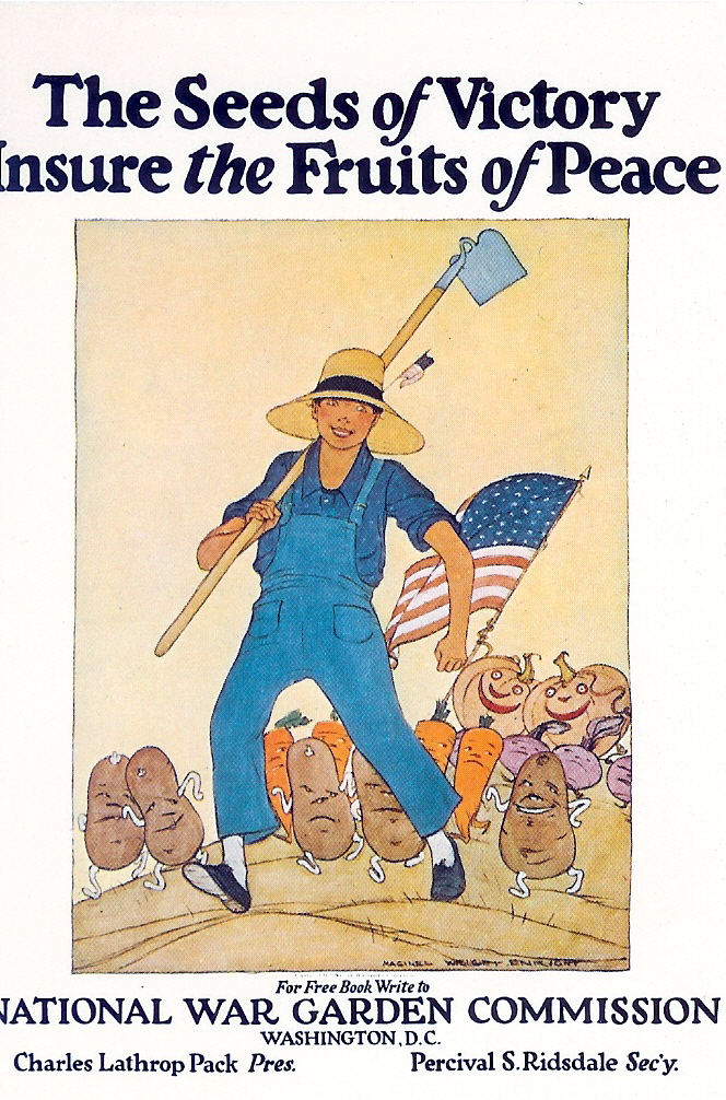 usa the seeds of victory