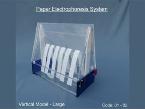 Paper Electrophoresis System