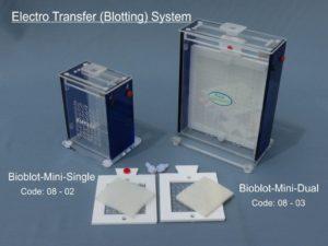 Electro Transfer Blotting System