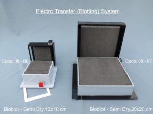 Blotting System