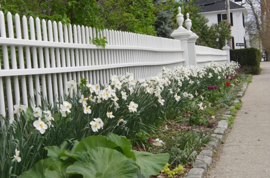 fence-879x580