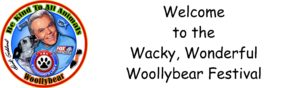 woollybear-review-stage-banner