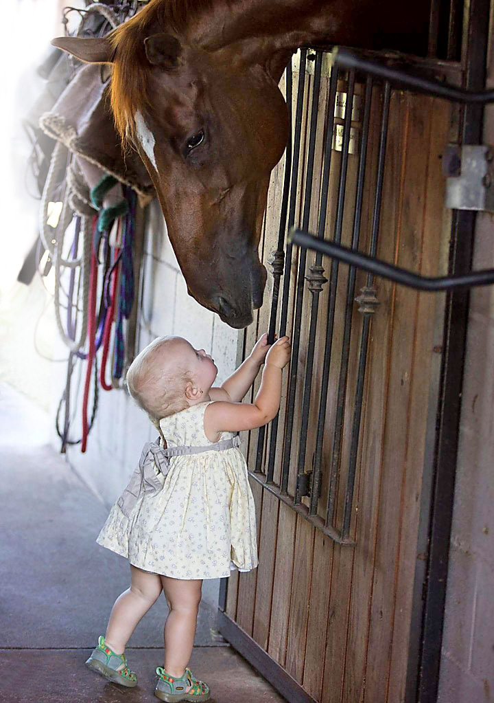 toddler girl with gentle horse at throwing copper farm riding lessons ormond beach fl