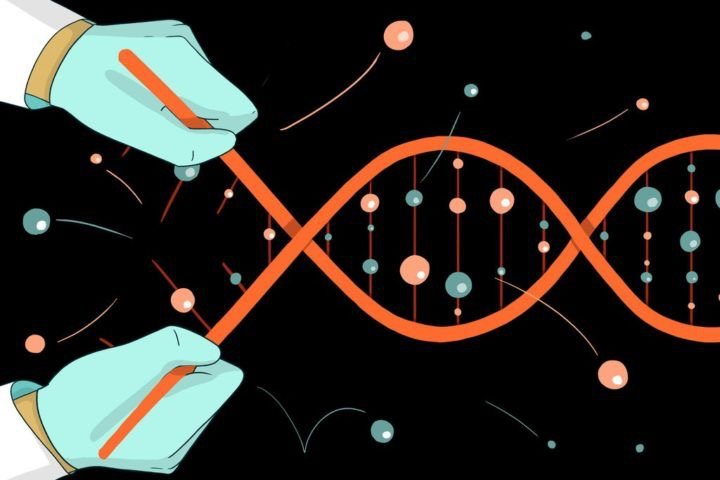 Importance of Tris EDTA (TE) buffer in DNA extraction