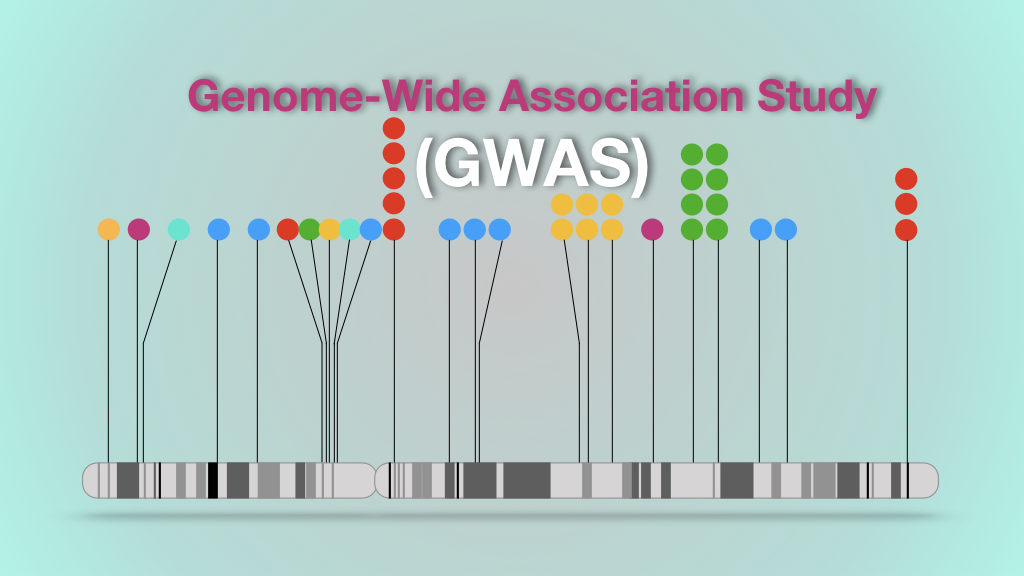 An introduction to genome-wide association study