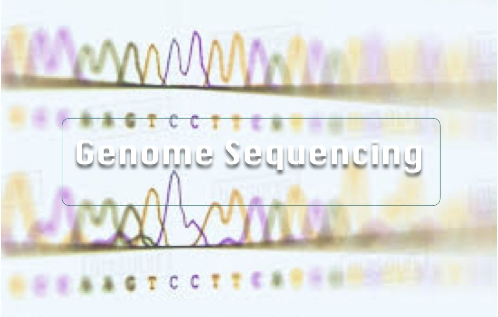 3 of the best genome sequencing methods